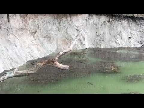 """Ocurrió un """"Xuch"""" en la Laguna de Chakanbakán"""