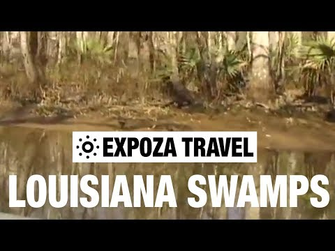 Louisiana Swamps (USA) Vacation Travel Video Guide