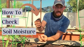 Garden How To: Quick & Easy Soil Moisture Test