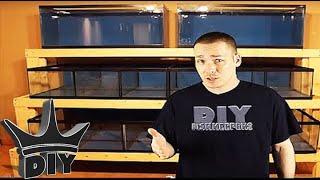 The King Of Diy Aquarium Channel