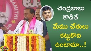 KCR : Latest Surveys Says TRS party Is Going To Win Above 100 Seats And Also slams Chandrababu