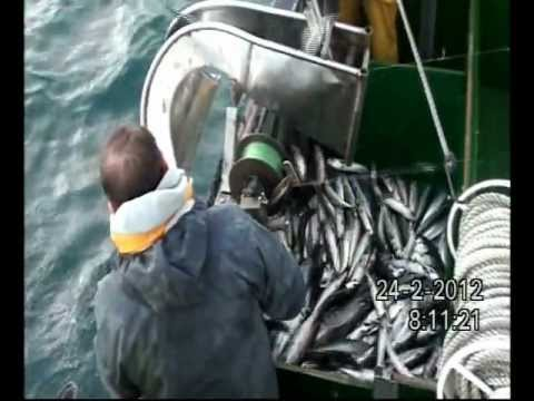 videos pesca profesional NUBERU CABALLA 2012 Nº2 Y 3 commercial fishing Videos De Viajes