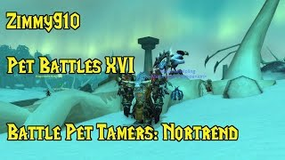 Wow - Pet Battles 16 - Northrend Master Tamers