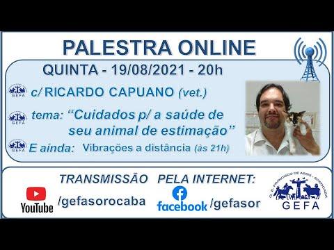 Assista: Bate-Papo Online - C/ RICARDO CAPUANO (19/08/2021)