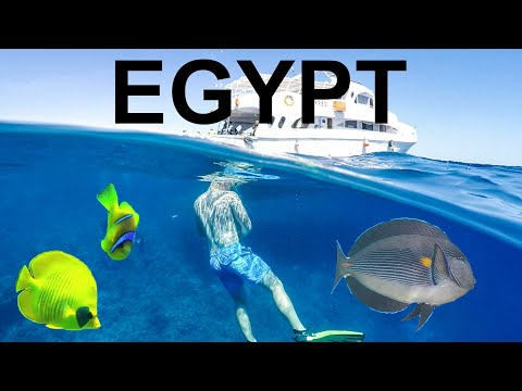 Egypt 2017 | Red Sea Scuba Diving