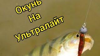 Окунь на ультралайт Рыбалка Дзержинск Рыбалка на окуня Тактика ловли рыбы Карп Беларусь
