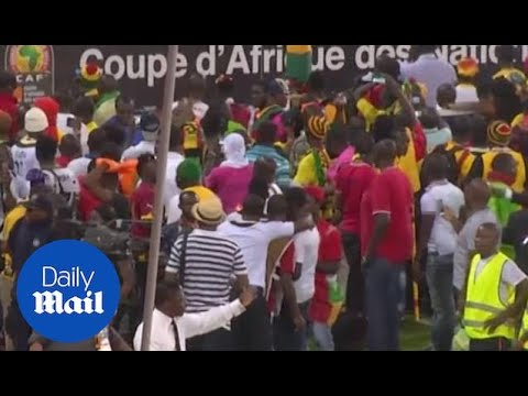 Footage of crowd trouble during Ghana vs Guinea AFCON semi-final - Daily Mail