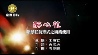 朱海君-醉心花【KTV導唱字幕】1080p HD