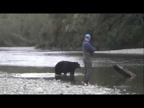 POLAR BEAR STEALS FISH FROM FISHERMAN!!! | Doovi