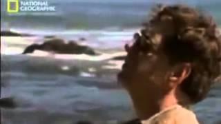 Секунды до катастрофы  Азиатское цунами   документальный фильм