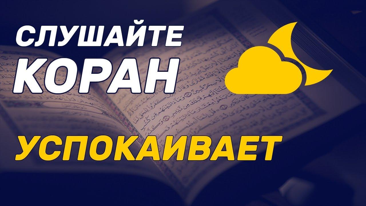 Суросу кыргызча текст ясин Мусульманская молитва