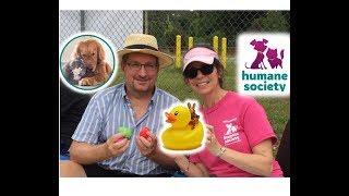Become a Humane Society Volunteer