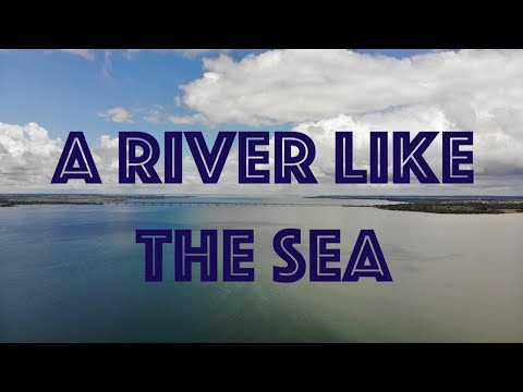 The Paraná: A River Like The Sea