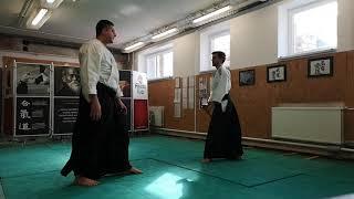Tanto dori yokomen uchi gokyo, iriminage, kotegaeshi