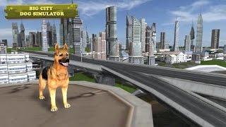 👍🐕Big City🐶Dog Simulator - By Mud Bucket Games Simulation - iTunes/Android