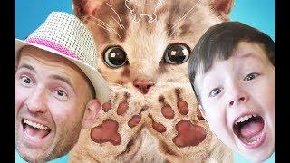 СИМУЛЯТОР Маленького КОТЕНКА #1 Все ломает Напала Собака мульт Игра для ДЕТЕЙ #KIDS CHILDREN