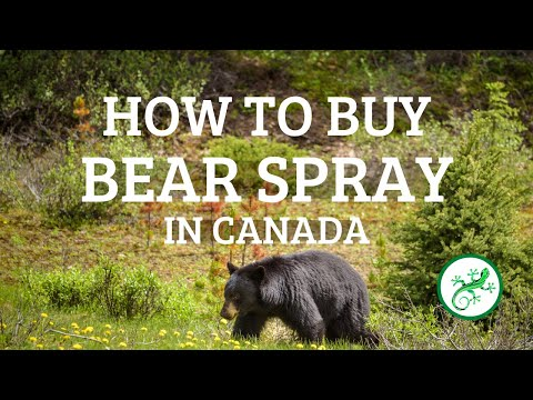 Where To Buy Bear Spray In Canada And How To Buy It | Outdoor Safety Tips By PerfectDayToPlay TV