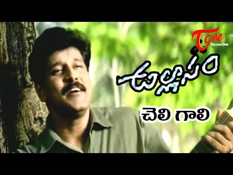 Ullasam Telugu Movie Songs | Cheli Gali Nanu Taaki Song | Vikram | Maheswari