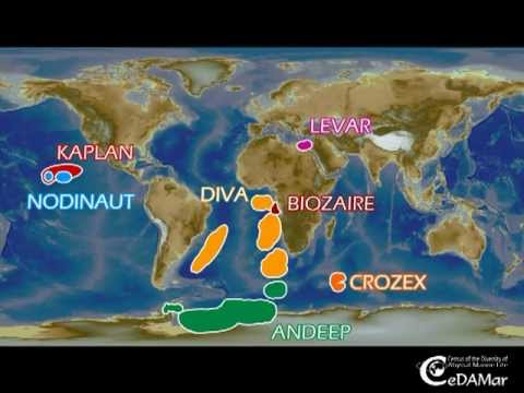 Biogeography of Deep-Sea Paramesochridae - WCMB 2011.mpg