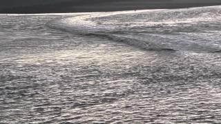 Прилив у Мон Сен  Мишеля(