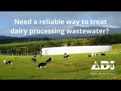Treating Dairy Processing Wastewater