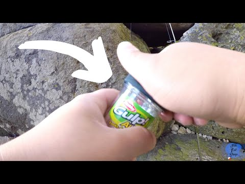 How To Catch Fish With Gulp Alive Minnow
