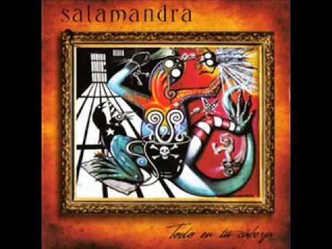 salamandra-estas-diego-invernizzi