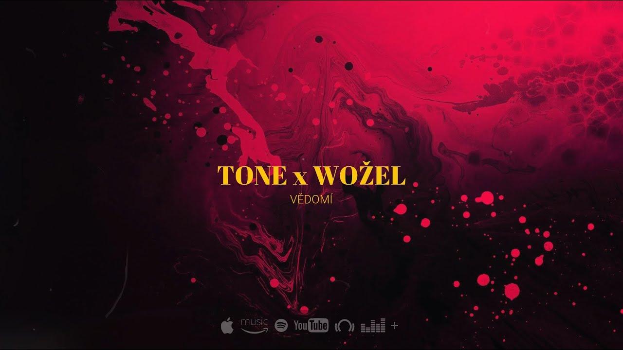 Download TONE x WOŽEL - VĚDOMÍ