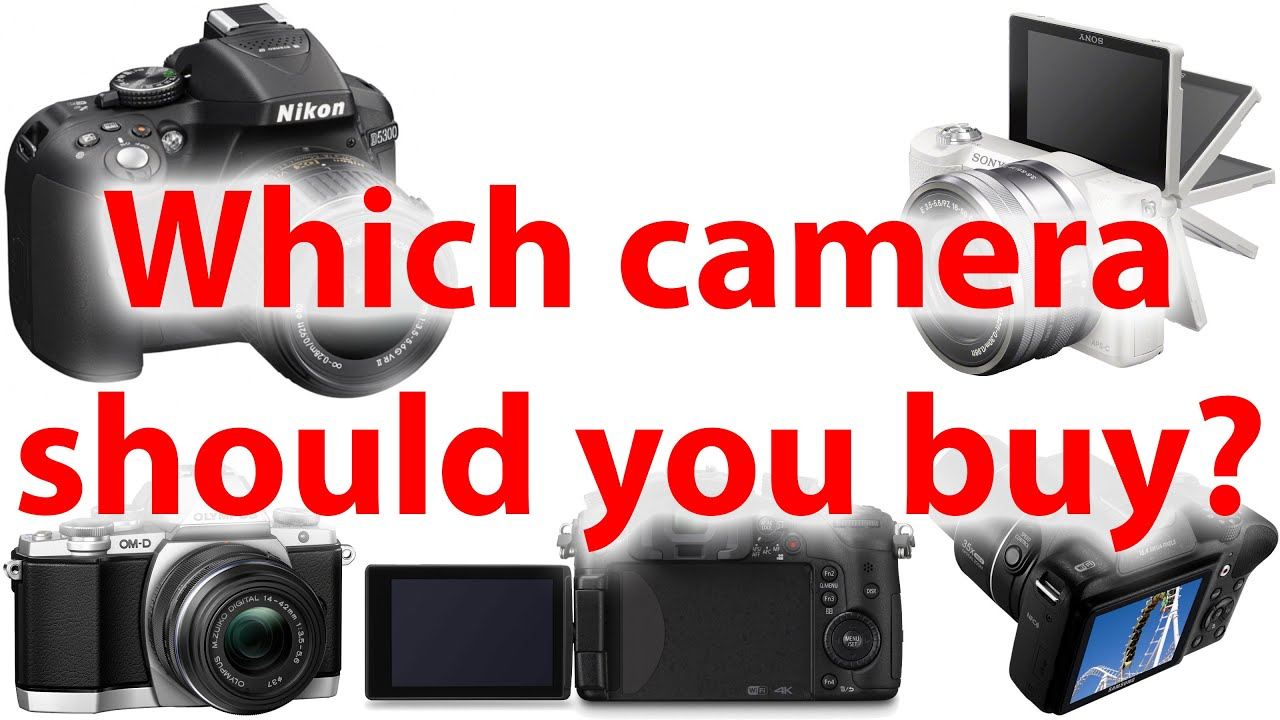 Which Camera Should I Buy? | Northrup Photo