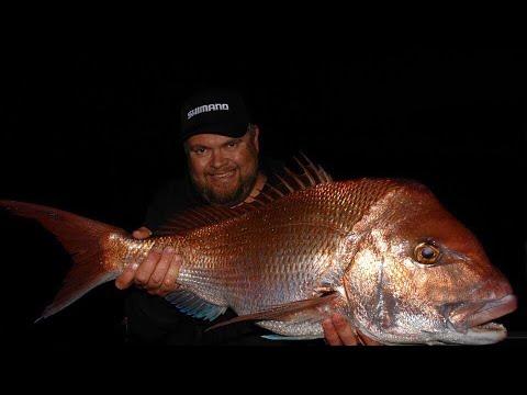 SNAPPER FISHING MADNESS - YouFishTV