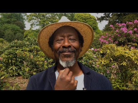 clarke peters on utopia