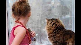 New funny video----Cut Dog pet amazing moment