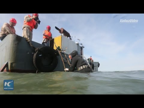 37 hours! Chinese engineers repair submarine cable