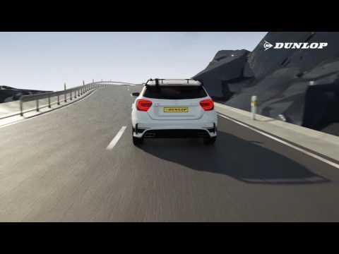 Dunlop Sport Maxx RT2 POS Film