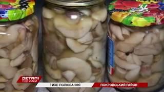 Как собирать грибы, чтобы не попасть в больницу с отравлением?
