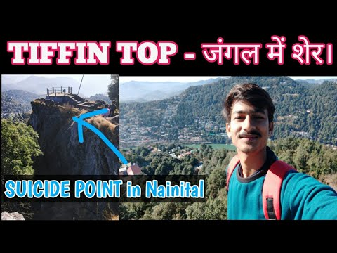 Nainital To Tiffin Top 5km Trekking Vlog | Real Tiger 🐯 In Tiffin Top Jungle, I Was Shocked