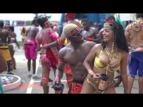 Tribe Trinidad Carnival 2014 by lehwego