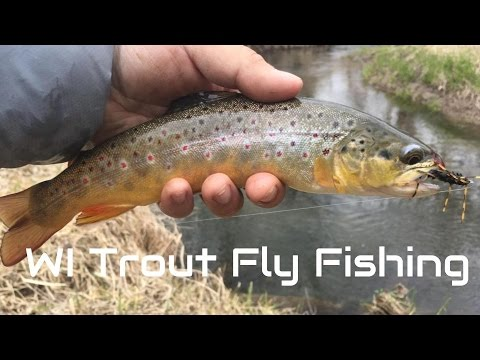 Wisconsin trout fly fishing youtube for Trout fishing wisconsin