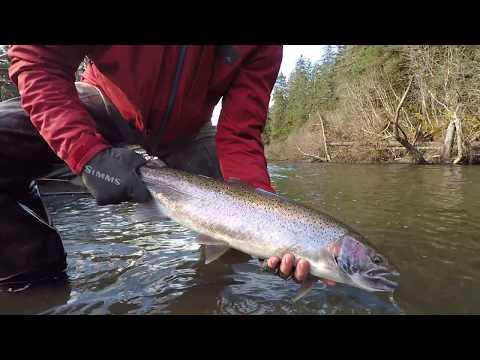 Situk River Spring Steelhead Fishing