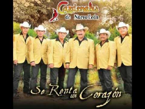 Se Renta Un Corazón Cardenales De Nuevo León