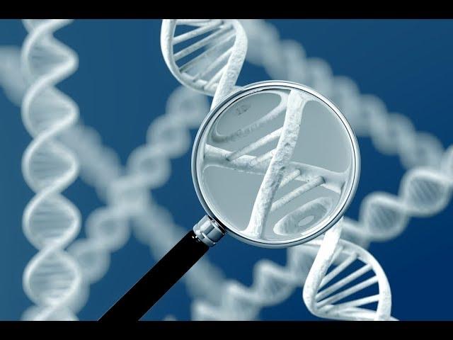 cfDNA/RNA Extraction Kit (circulating cell free DNA and RNA)