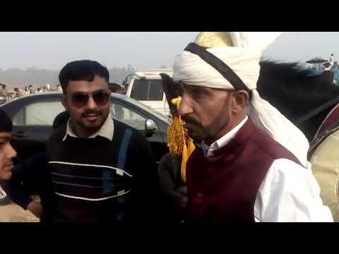 Auqaab haideri hijraan club with senior Shiraxi rider peer Syed babbu shah