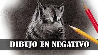 tutorial: DIBUJO EN NEGATIVO