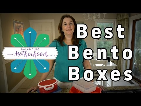 The Best Bento Lunch Boxes for Back to School review