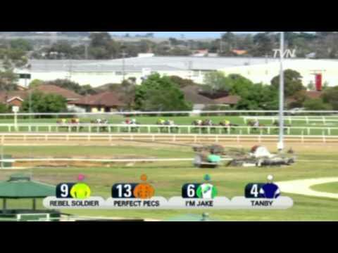 2011 Geelong Cup - Dunaden