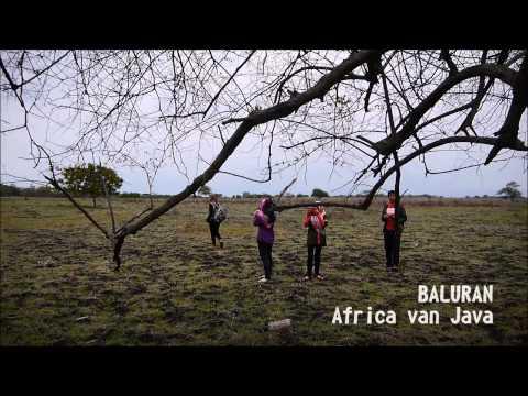 Explore Banyuwangi, Ijen Crater and Baluran