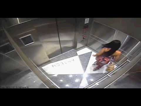 Woman caught on camera kicking dog inside elevator
