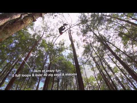 TreeTop Crazy Rider Rollercoaster Zip Lines! 1km And 330m: Near Sydney, Australia