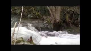 Buscadores de oro! the river of gold! gold pann