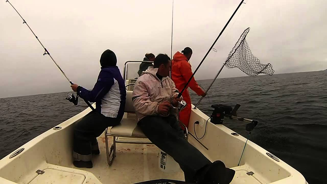2013 salmon fishing puget sound youtube for Fishing puget sound